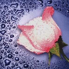 Светло-розовая роза Алмазная частичная вышивка (мозаика) Color Kit