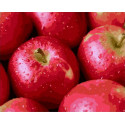 Аппетитные яблочки Раскраска картина по номерам на холсте GX39118