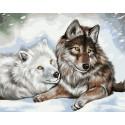 Волчья пара Раскраска картина по номерам на холсте GX38959
