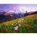 Полевые цветочки Раскраска картина по номерам на холсте GX38958