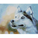 Снежный/Собака Алмазная мозаика вышивка на подрамнике APK59006
