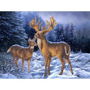 Олени в зимнем лесу Набор для вышивки бисером Каролинка КБЖН(Ч) 3037