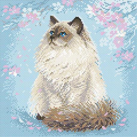 Мяу-дзен Алмазная вышивка мозаика Риолис АМ0056