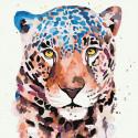 Акварельный ягуар Раскраска картина по номерам на холсте