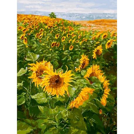 Солнечные братья Раскраска картина по номерам на холсте Белоснежка 386-AS