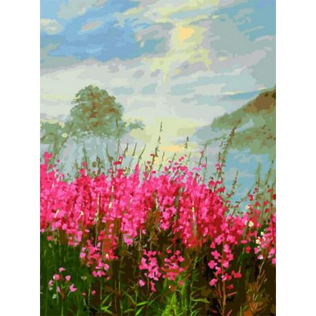 Иван-чай Раскраска картина по номерам на холсте Белоснежка 388-AS