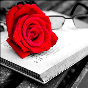 Роза и книга Алмазная вышивка мозаика АЖ-1871