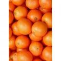 Апельсины Алмазная вышивка (мозаика) Гранни