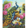 Гордые павлины Раскраска картина по номерам на холсте U8069