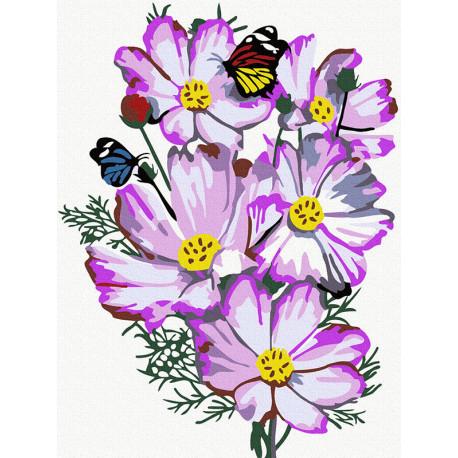 цветы космеи Раскраска картина по номерам на холсте KH0988