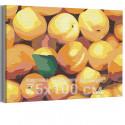 Персики 75х100 см Раскраска картина по номерам на холсте AAAA-RS139-75x100