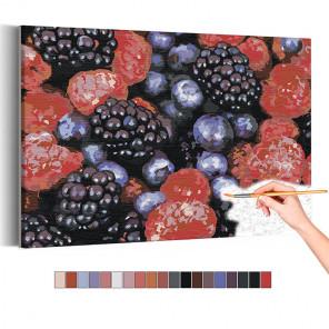 Малина и ежевика Раскраска картина по номерам на холсте AAAA-RS133