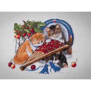 Котята и вишни Набор для вышивания Merejka K-68