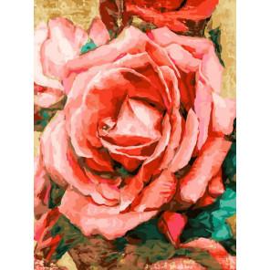 Благородная роза Раскраска картина по номерам на холсте Белоснежка 394-AS