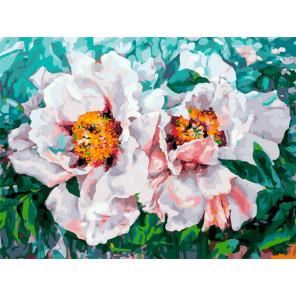 Два пиона Раскраска картина по номерам на холсте Белоснежка 396-AS