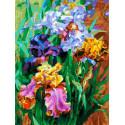 Ирисы садовые Раскраска картина по номерам на холсте Белоснежка 397-AS