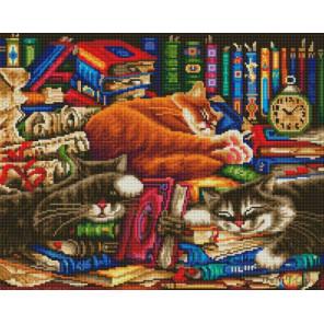 Библиотека кошек Алмазная вышивка мозаика на подрамнике Белоснежка 617-ST-S