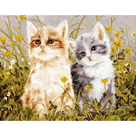 Два котенка Раскраска по номерам акриловыми красками на холсте Menglei