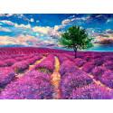 Дерево на лавандовом поле Раскраска картина по номерам на холсте GX40514