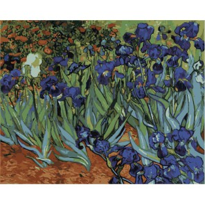Ирисы ( художник Винсент Ван Гог ) Раскраска (картина) по номерам акриловыми красками на холсте Menglei