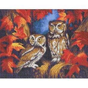 Две совы Канва с рисунком для вышивки бисером Каролинка ТКБЖ 3035