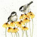 Пение птиц Набор для вышивания Bothy Threads XHD77