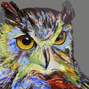 Сова Раскраска картина по номерам CF122