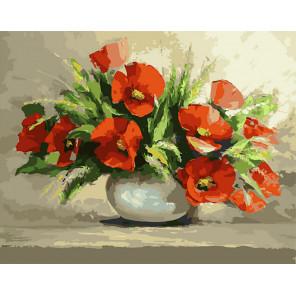 Маки Раскраска картина по номерам CG2031