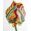 Рождение Алмазная вышивка мозаика Color Kit KU101