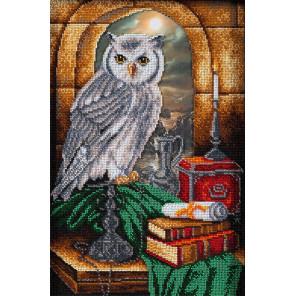 Тайная комната Набор для вышивания бисером Кроше В-285