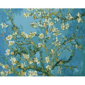 Цветущие ветки миндаля Ван Гог Раскраска картина по номерам на холсте Color Kit CG2036