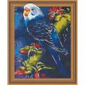 Волнистый попугайчик Алмазная вышивка мозаика Color kit TSGJ1017