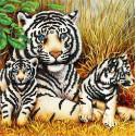 Тигры Ткань с рисунком для вышивки бисером Божья коровка 0153