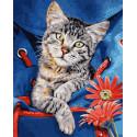 Кот в сумке Раскраска картина по номерам Schipper (Германия) 9240842