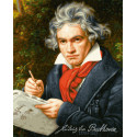 Людвиг Ван Бетховен Раскраска картина по номерам Schipper (Германия) 9130834