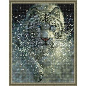 Белый тигр Алмазная вышивка мозаика с нанесенной рамкой Molly KM0902