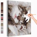 Спящий котёнок Раскраска картина по номерам на холсте AAAA-RS236