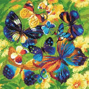 Яркие бабочки Алмазная вышивка мозаика Brilliart АМ0038
