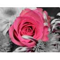Роза на сером фоне Алмазная частичная вышивка (мозаика) Molly KM0934