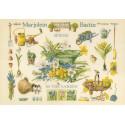 Spring In The Garden Набор для вышивания LanArte PN-0007964
