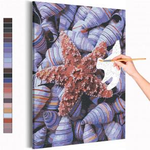 Ракушки / Море / Морская тема Раскраска картина по номерам на холсте AAAA-RS231