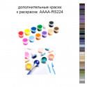 Дополнительные краски для раскраски 40х50 см AAAA-RS224