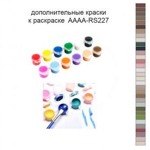 Дополнительные краски для раскраски 40х50 см AAAA-RS227