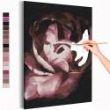 Лепестки пиона / Цветы Раскраска картина по номерам на холсте AAAA-RS234