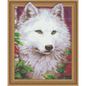 Белая волчица Алмазная вышивка мозаика Color Kit TSGJ1019