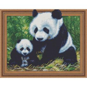 Панды в лесу Алмазная вышивка мозаика TSGJ1261