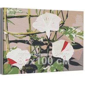 Японский вьюнок / Цветы 80х100 см Раскраска картина по номерам на холсте AAAA-RS228-80x100
