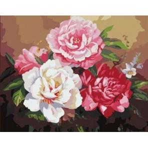 Розы Шебби шик Раскраска (картина) по номерам на холсте Molly
