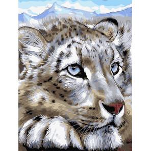 Снежный леопард Картина по номерам Molly KK0695