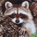Енот-полоскун Картина по номерам Molly KH1079